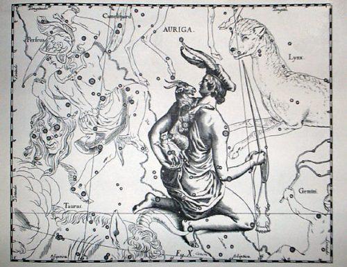 Amaltea, la capra che diventò una stella