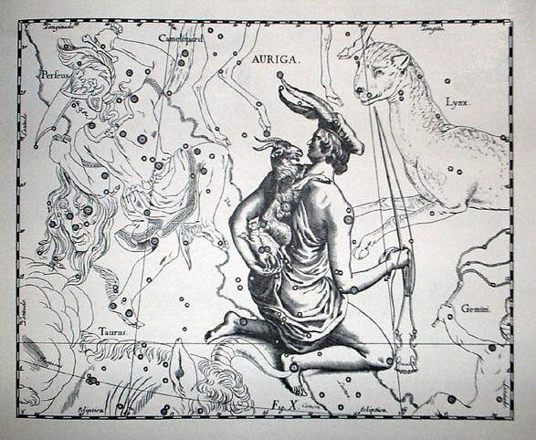 Illustrazione costellazione Auriga di Hevelius, con amaltea rappresentata su forma di capra