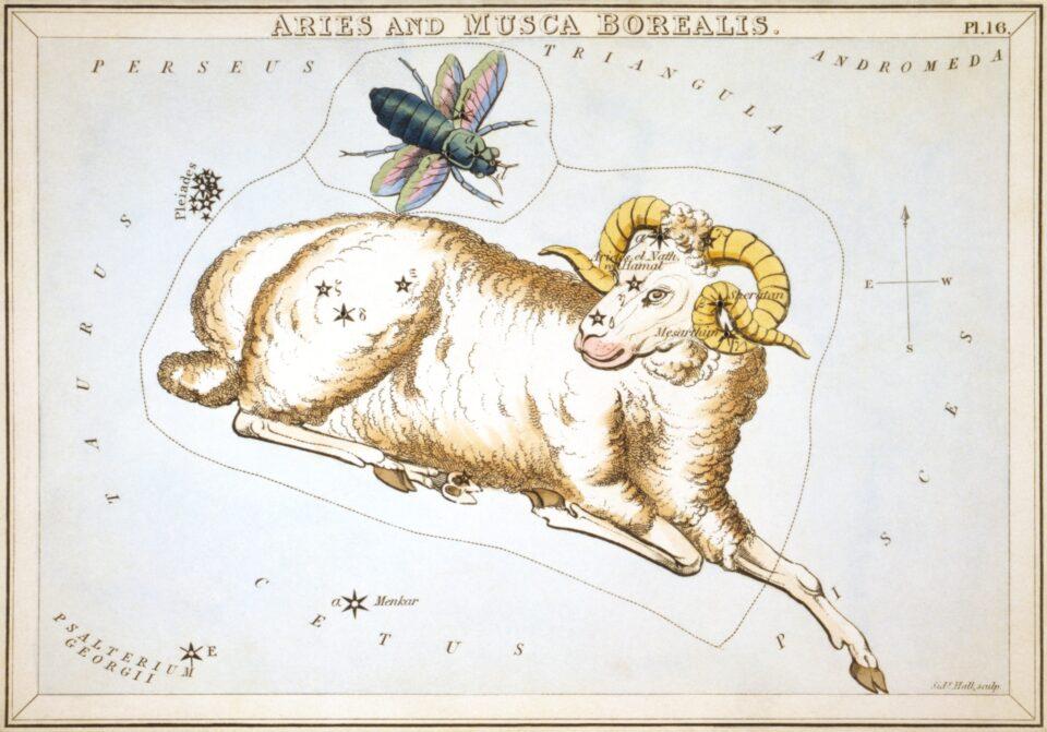 La costellazione dell'ariete, Sidney Hall, 1825, United State Library of Congress, Washington