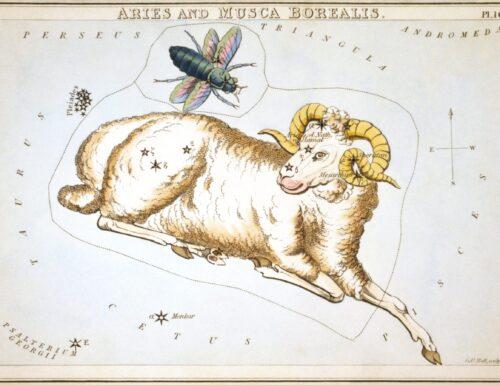 Zodiaco mitologico: Ariete