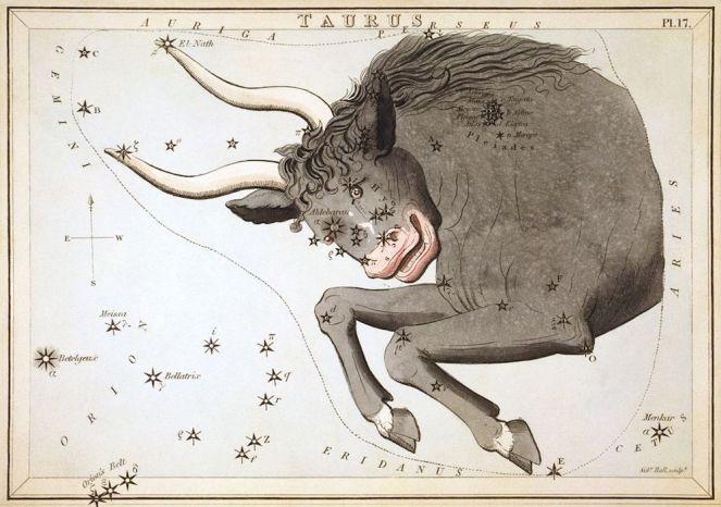 La costellazione del Toro, Sidney Hall, 1825, United State Library of Congress, Washington
